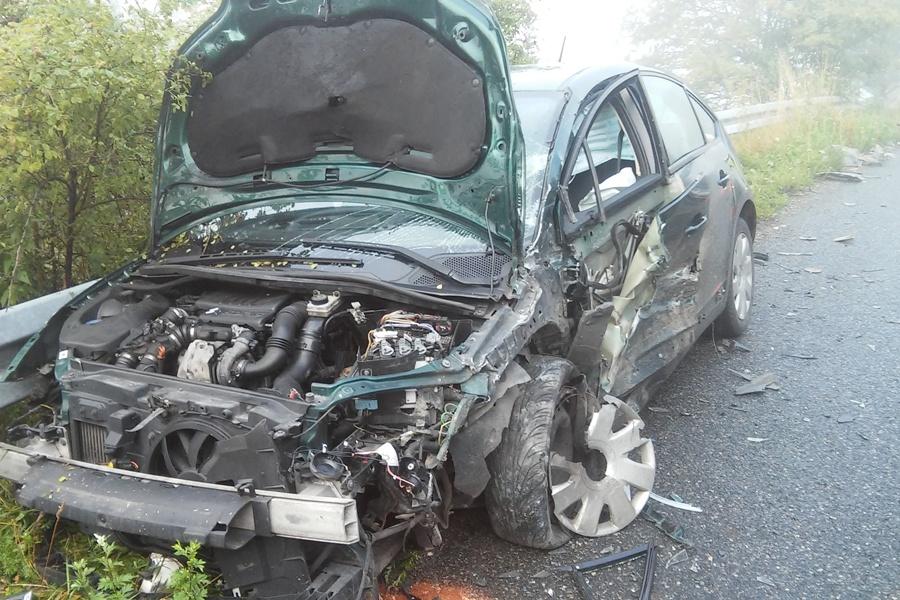 Wypadek we mgle