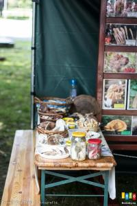 Piknik Ekologiczno-Leśny