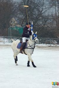 Pędzą konie po...śniegu